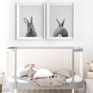 Bunny Rabbit Canvas