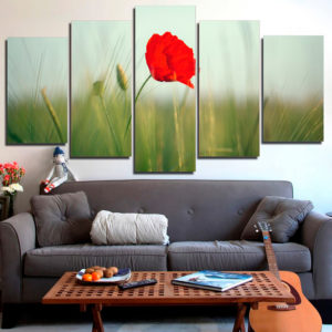 Poppy Flower Canvas