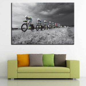 1 Panel Cross Country Bicycle