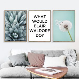3 Panel Dandelion and Succulent Canvas Prints2