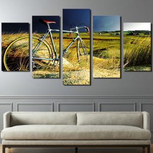 5 Panel Bicycle in Stormy Field