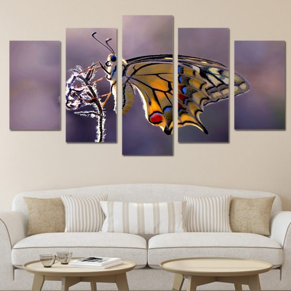 5 Panel Butterfly in Action