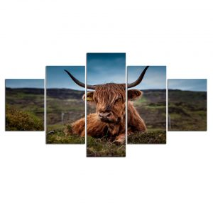 5 Panel Cow in Grassland